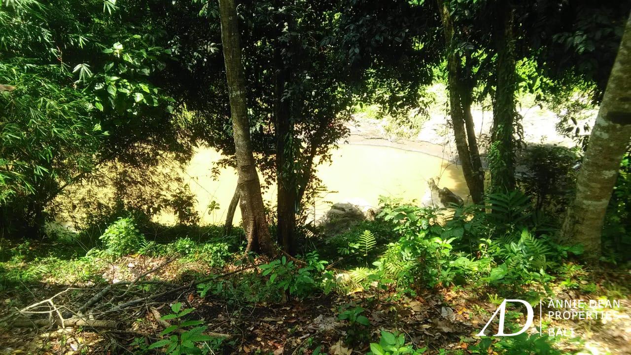 BEAUTIFUL RIVER SIDE FREEHOLD LAND IN CEPAKA, TABANAN