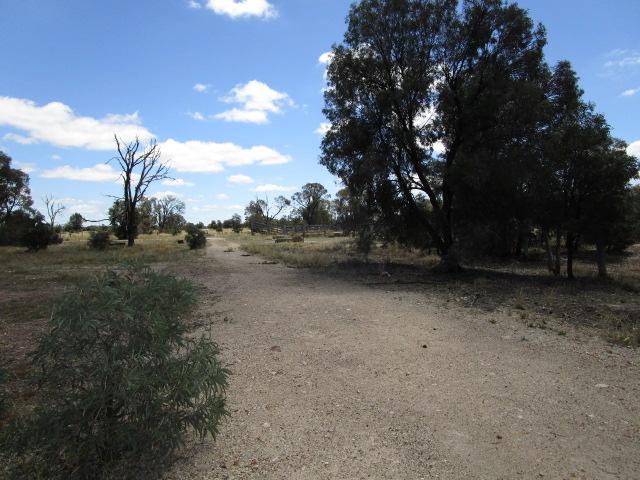 LOT 79 Surat Development Road, Tara, QLD, 4421 - Image 1