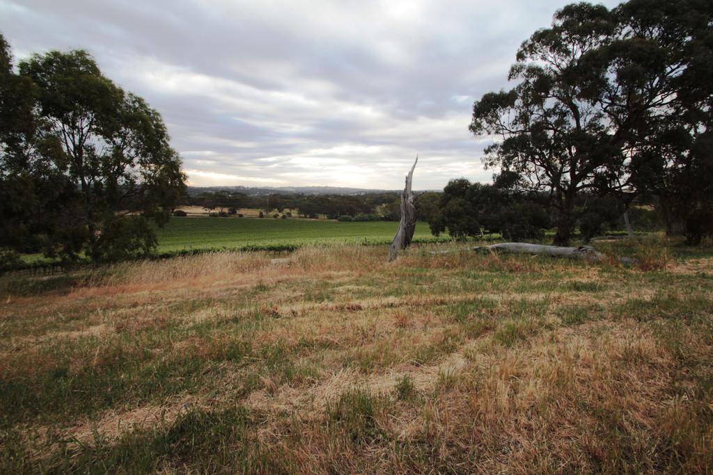 82 Spring Farm Road North, Clare, SA, 5453 - Image 19