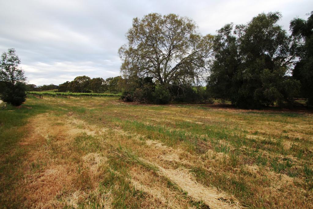 82 Spring Farm Road North, Clare, SA, 5453 - Image 10
